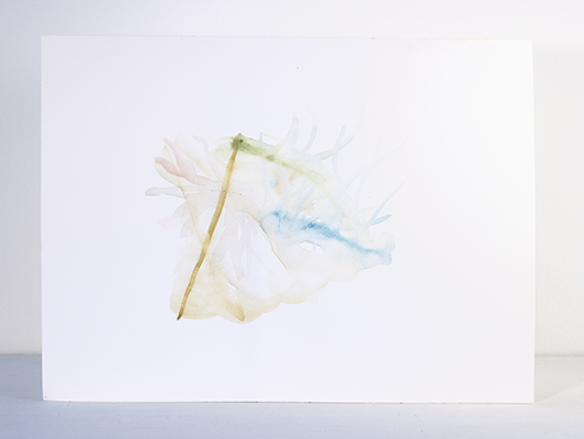 coral_tent | watercolor_on_paper | 2009